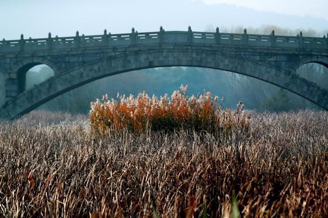 """摄影师的眼睛向你展示了各种各样的""""东湖桥"""" 第7张"""