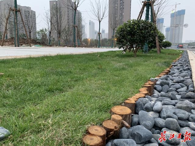 武汉今年将完成80条微循环道路的建设。你家附近有吗? 第8张