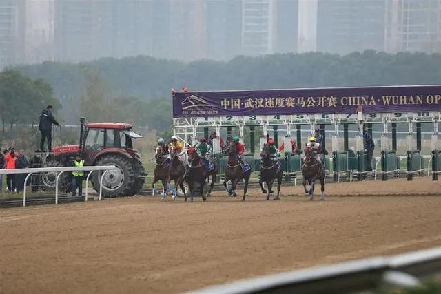 2020中国武汉速度赛马公开赛完美落幕。 第4张