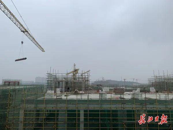 光谷南大健康产业园第一批所有单体建筑即将封顶。 第3张
