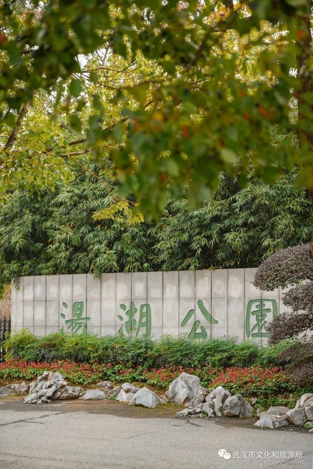 武汉是一个宝藏公园。我不跟TA说普通人的事。 第3张