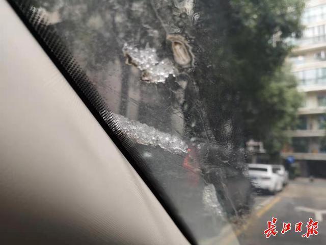 雪停了!但是到时候武汉会越来越冷。 第1张