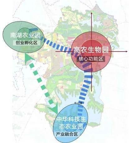 就在刚才,武汉农博会签约超过800亿,世界第一个试管藕上了! 第3张