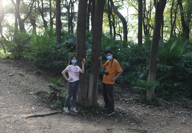一代又一代武汉人的记忆就藏在这里。武汉动物园邀请你去看老照片展。 第3张