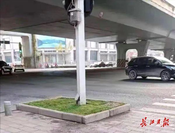 武汉正在调查头绿地和绿化工地进行调查整。 第4张