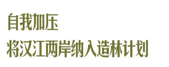 收官!武汉两江四岸成为全景生态绿廊。 第4张