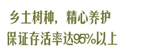收官!武汉两江四岸成为全景生态绿廊。 第9张