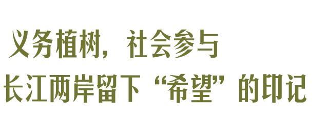 收官!武汉两江四岸成为全景生态绿廊。 第12张