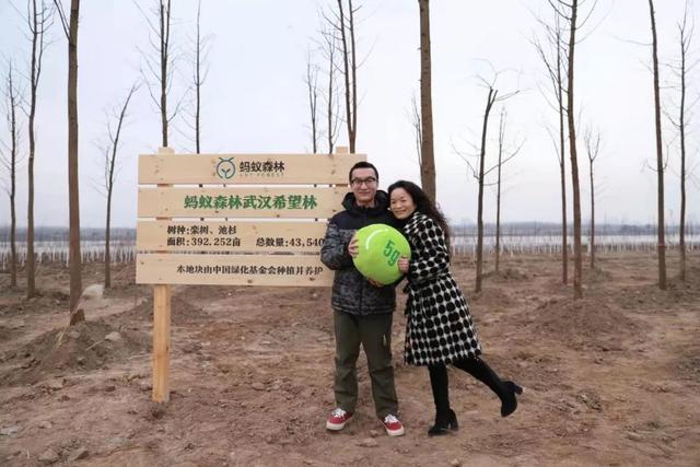 收官!武汉两江四岸成为全景生态绿廊。 第14张