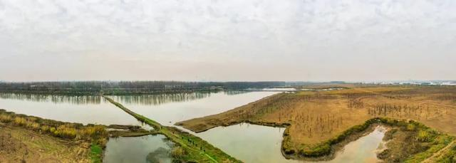 收官!武汉两江四岸成为全景生态绿廊。 第18张