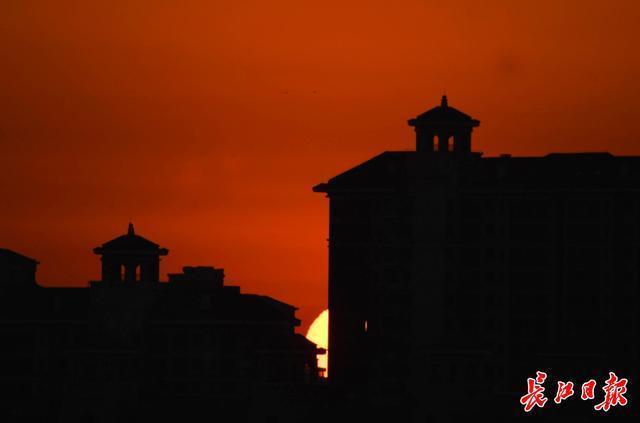 2021、武汉第一缕阳光|图集。 第2张