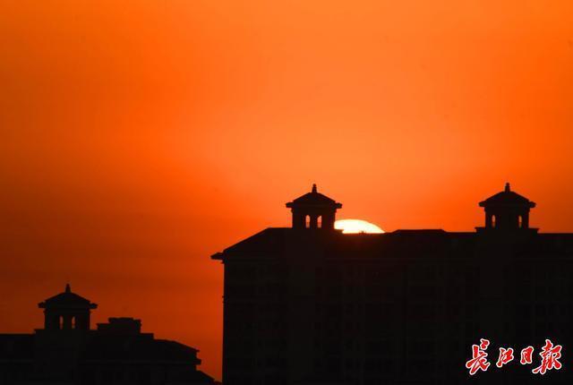 2021、武汉第一缕阳光|图集。 第3张