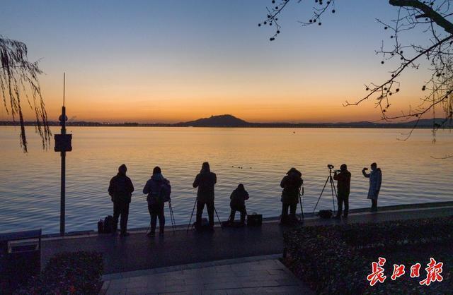 追光、赏梅、观鱼、许愿……你的新年第一天,东湖承包了。 第1张