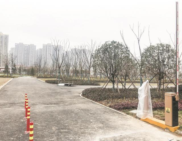 武汉园路公园一期预计春节后开放。 第2张