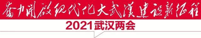 2021年武汉将付出这些巨大的利益,所有武汉人都将分享其中! 第2张