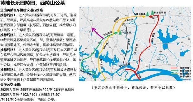 出去看花注意!这些道路将实施交通管制。 第20张