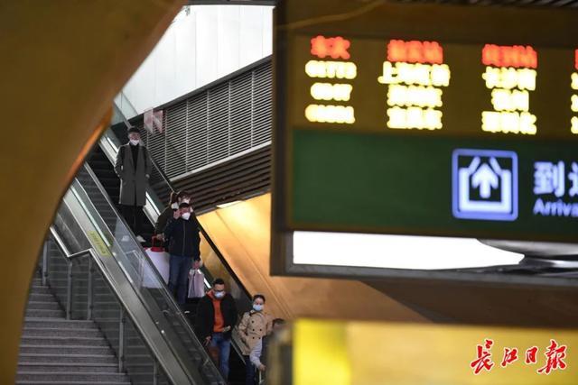 武汉春光灿烂,百花齐放,引来全国赏花客争相。 第6张