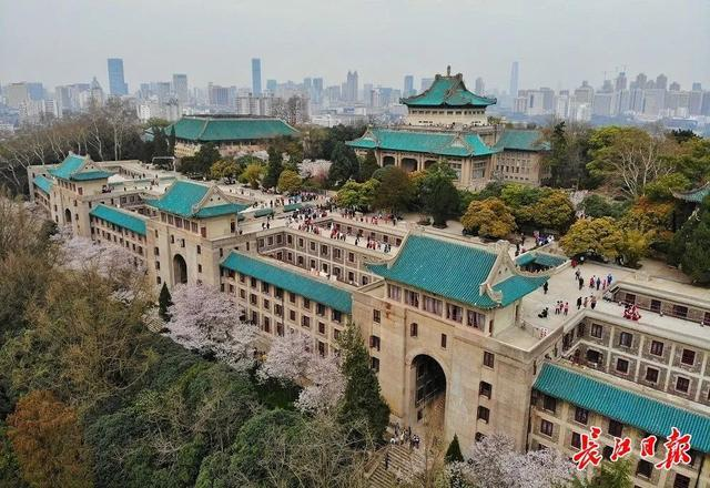 武汉春光灿烂,百花齐放,引来全国赏花客争相。 第10张