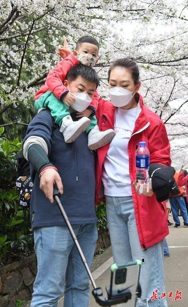 武汉春光灿烂,百花齐放,引来全国赏花客争相。 第15张