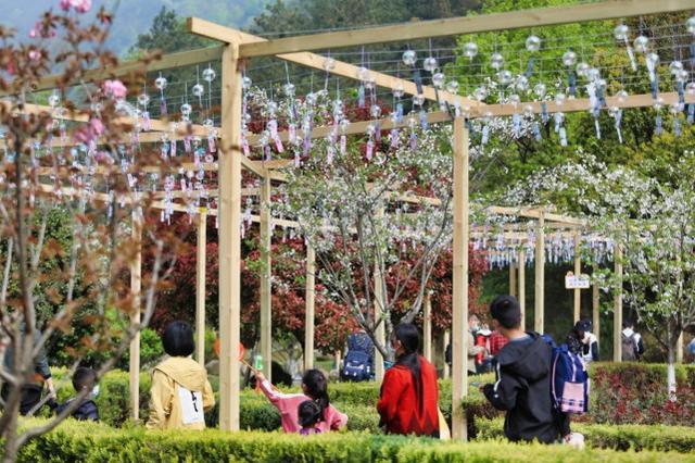 2023年清明小长假,湖北省共接待游客1170.3万人次。 第8张