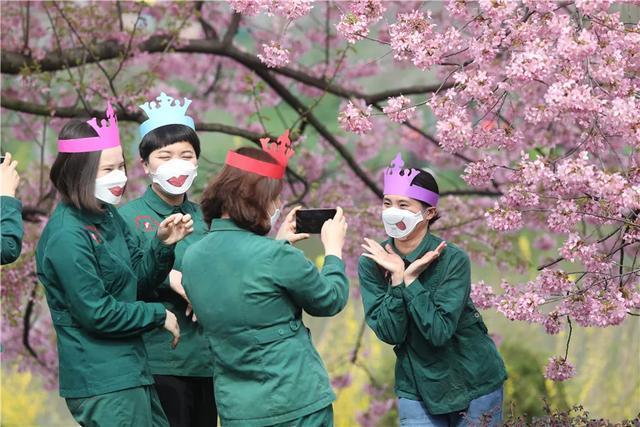 七十八万人次六成外地客,东湖之樱点亮英雄之城。 第4张