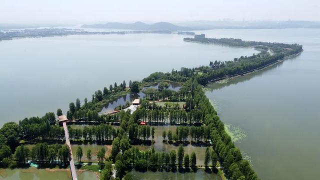 武汉河湖湿地哪个最美?这次你算了! 第5张