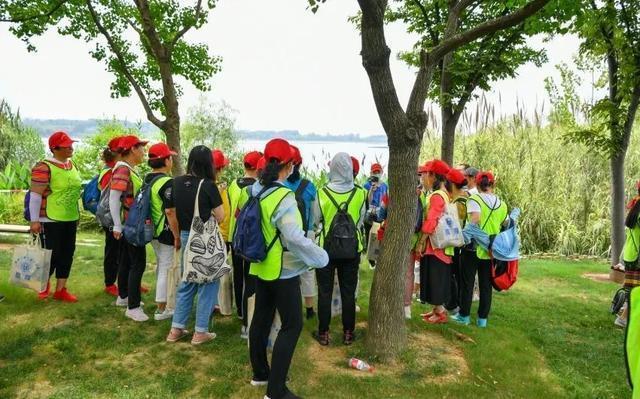 武汉河湖湿地哪个最美?这次你算了! 第10张
