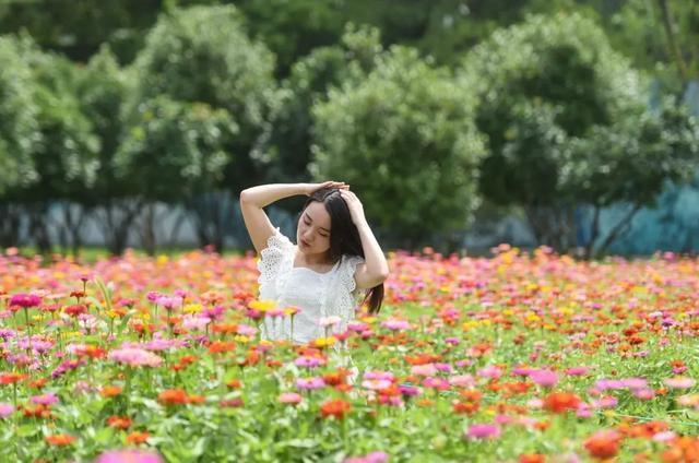 花海如烟火,来看武汉耀眼的夏日。 第3张