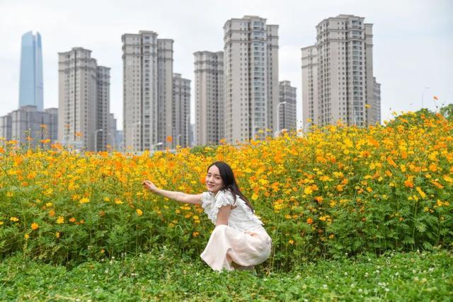 花海如烟火,来看武汉耀眼的夏日。 第4张